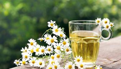 При лечении фиброаденомы очень хорошо помогает настойка из трав в сосотав которой входит ромашка